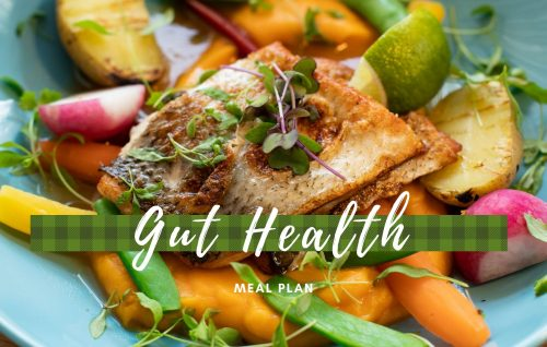Gut Health Meal Plan
